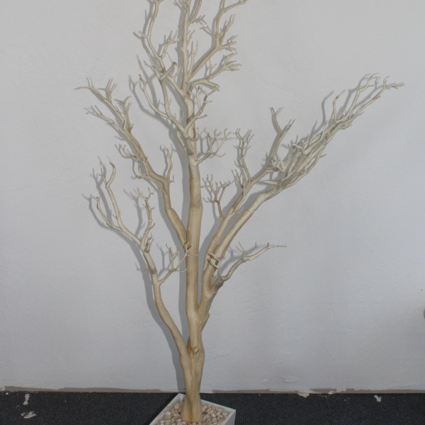 48 Tan Potted Tree